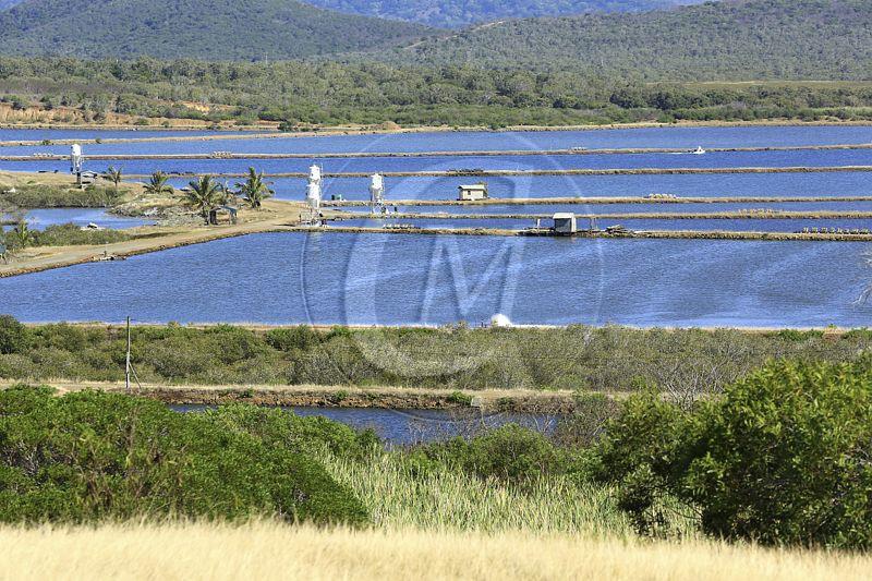 France, Nouvelle Caledonie, Grande-Terre, Province Sud, Moindou, ferme aquacole, SODACAL, elevage de crevettes