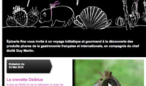 TV5 monde Obsiblue-web